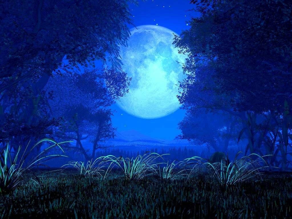 在那个静夜里(原) - 蓝色宁静 - 蓝色宁静